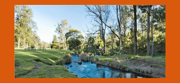 OReillys-Vineyard-Creek-Views-Platypus-Spotting