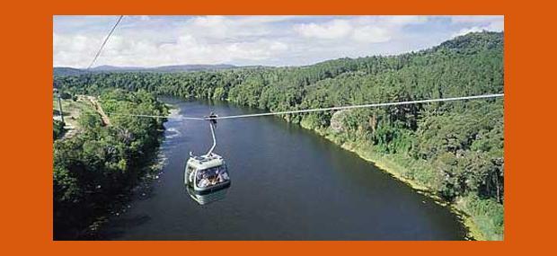 Skyrail-Rainforest-Cableway-Cairns-Kuranda-Day-Tours